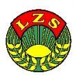 V kolejka XIII powiatowej ligi LZS w piłce nożnej mężczyzn