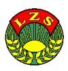 Wyniki 6 kolejki XIII Powiatowej Halowej Ligi LZS w piłce nożnej mężczyzn